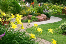 Landscaping Service Minneapolis St Paul MN